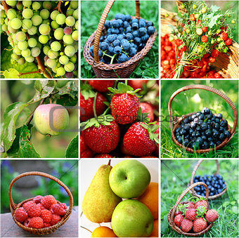 Berries and fruits