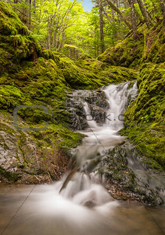 Small waterfall in the park (Slow shutter speed)