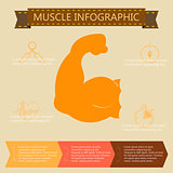 illustration of health lifestyle infographic in flat designed