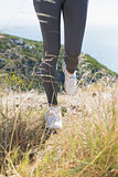 Fit woman jogging on mountain trail