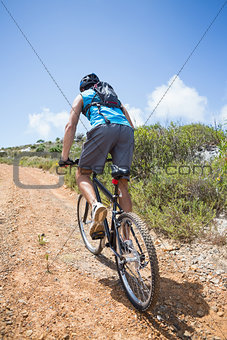 Fit man cycling up mountain trail