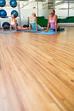 Yoga class in cobra pose in fitness studio