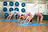 Yoga class in crab pose in fitness studio