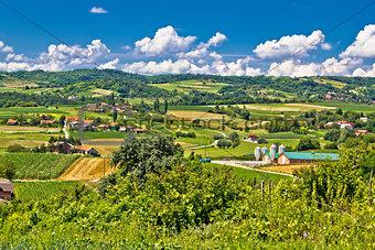 Countryside farmland green scenery in Croatia
