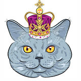 vector British cat  in gold crown