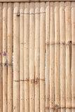 pattern of bamboo