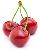 Three Sweet ripe cherry isolated on a white background