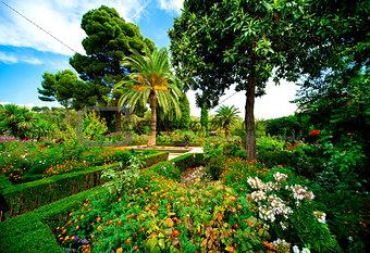 Alhambra garden. Granada, Spain