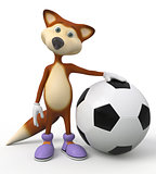 3d foxes football player.