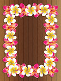 Frangipani frame on wood