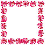 Frame from roses