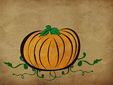 Vintage pumpkin background