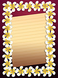 White plumeria flowers frame with paper