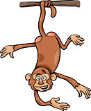 monkey on branch cartoon illustration