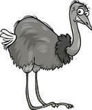 nandu ostrich bird cartoon illustration