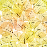 Seamless Background - Autumn Leaves Pattern