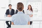 Businesswoman in a work interview