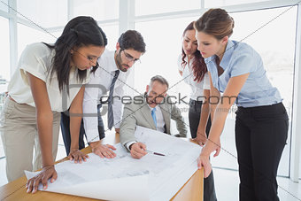 Business team reading work plans