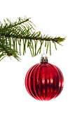 Red christmas decoration hanging from branch