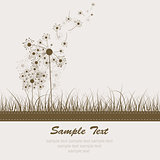 Аbstract dandelion background, vector