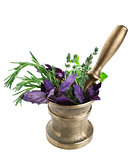 vintage bronze mortar and pestle with fresh herbs