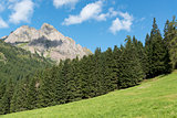 Mountains, forest and meadow in the Dolomites
