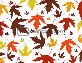 Autumn leaves vector illustration