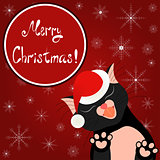 Cute Christmas card. Bright holiday background with tender cat who kisses you