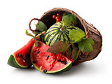 Watermelon and guelder
