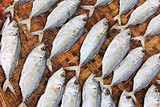Close-up dried fish