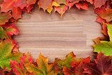 Border of fall maple leaves on wood