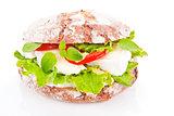 Vegetarian sandwich.