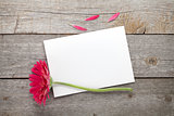 Purple gerbera flower and blank greeting card