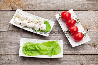 Tomatoes, mozzarella and green salad leaves