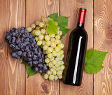 Red wine bottle and bunch of grapes