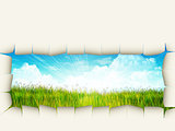 Grass background with ripped paper