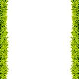 Grass frame