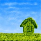Green grass field house