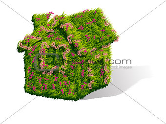 Green house with flowers