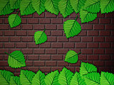 Green leaves and brick wall