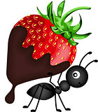 Ant carrying strawberry with chocolate sauce