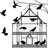 Birds and birdcage graphic