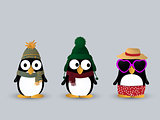 Cute penguin characters