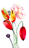 Colorful Tulips and Poppy flowers
