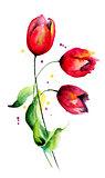 Original Tulips flowers