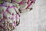 two fresh artichokes