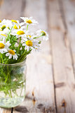 chamomile bouquet in jar