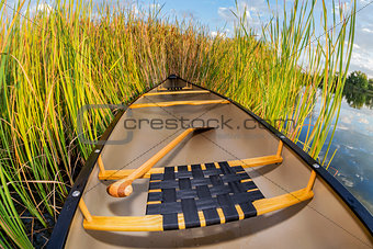 canoe and cattails