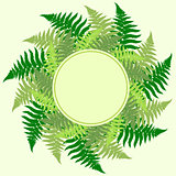 Fern leaves frame