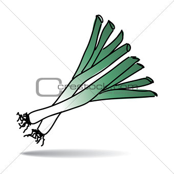 Freehand drawing leek icon